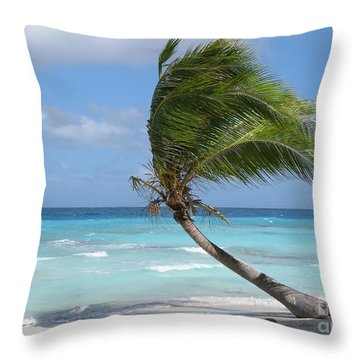 Against The Winds Throw Pillow by Jola Martysz