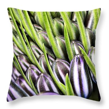 Agapanthus Buds Throw Pillow by Joy Watson