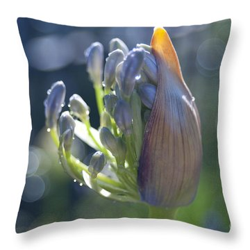 Agapanthus Coming To Life Throw Pillow