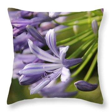 Agapanthus Flower Close-up Throw Pillow