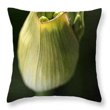 Agapanthus In The Daylight Throw Pillow by Joy Watson