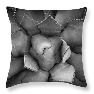 Agave Black And White Abstract Throw Pillow by Adam Romanowicz