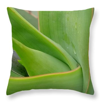 Agave Flow Throw Pillow