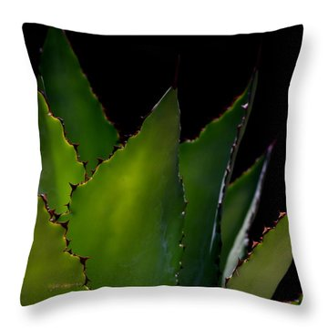 Agave Glow Throw Pillow