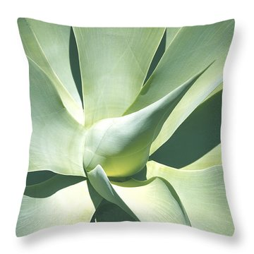 Agave Plant 1 Throw Pillow