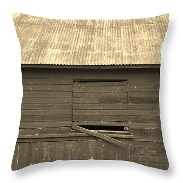 Throw Pillow featuring the photograph Age Sepia by Elizabeth Sullivan
