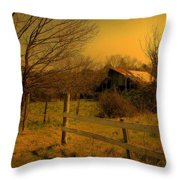 Ageing Gracefully Throw Pillow by Nina Fosdick