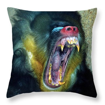 Agressive Mandrill Throw Pillow by Thomas Woolworth