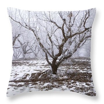 Agriculture - Apple Orchard Covered Throw Pillow