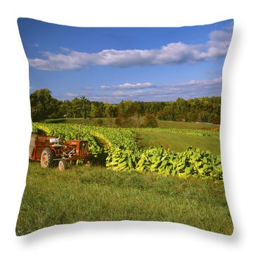 Agriculture - Fields Of Maturing Flue Throw Pillow by R. Hamilton Smith
