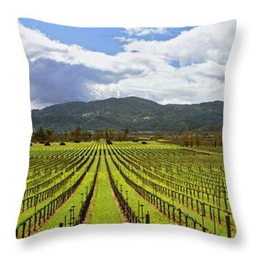 Agriculture - Wine Grape Vineyard Throw Pillow
