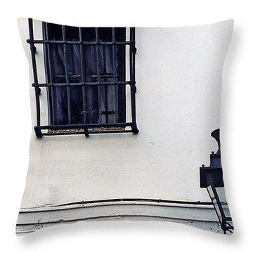 Agua Street Throw Pillow