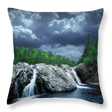 Aguasabon River Mouth Throw Pillow by Randall Nyhof