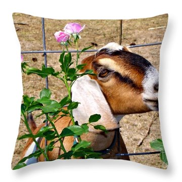 Ah I Do Love A Rose Throw Pillow