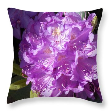 Ah Rhododendron Throw Pillow