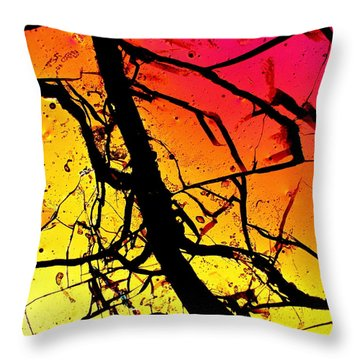 Jeffery Hodges Throw Pillows