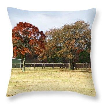 Aiken Throw Pillow by Andrea Anderegg