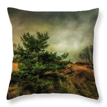 Throw Pillow featuring the photograph Ainsdale Dunes In Winter by Brian Tarr
