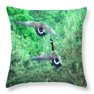 Throw Pillow featuring the photograph Air Fight by Lorna Rogers Photography