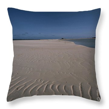 Air Photography Throw Pillow
