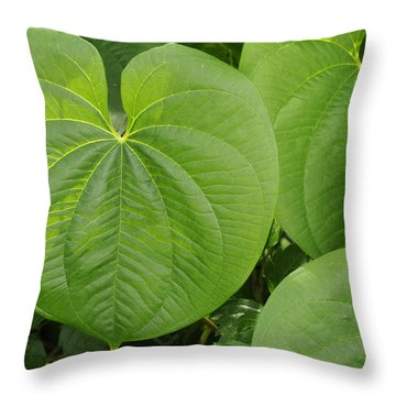 Throw Pillow featuring the photograph Air Potato Vine Leaves by Bradford Martin