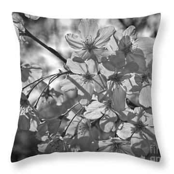 Akebono In Monochrome Throw Pillow by Peggy Hughes