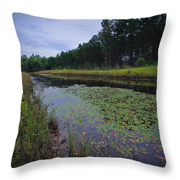 Alabama Country Throw Pillow by Julie Andel