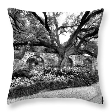 Alamo Grounds Throw Pillow
