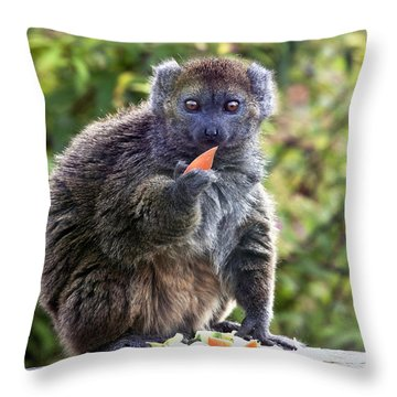 Alaotran Gentle Lemur Throw Pillow by Terri Waters
