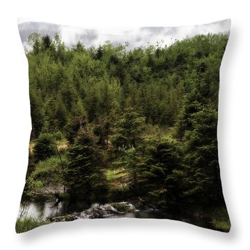 Throw Pillow featuring the photograph Alaska Beauty 2 by Davina Washington