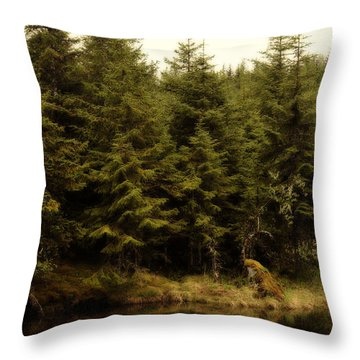 Throw Pillow featuring the photograph Alaska Beauty by Davina Washington