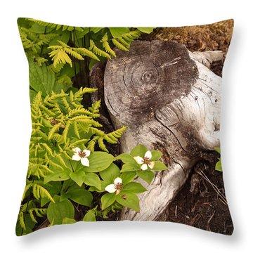 Alaskan Foliage Throw Pillow