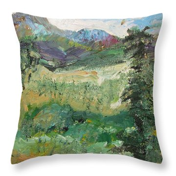 Alaskan Landscape Throw Pillow