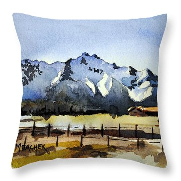 Alaskan Springtime Throw Pillow by Spencer Meagher