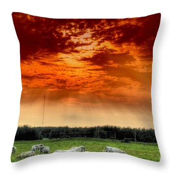 Alberta Canada Cattle Herd Hdr Sky Clouds Forest Throw Pillow by Paul Fearn