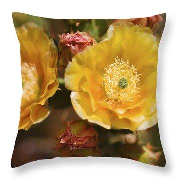 'albispina' Cactus #2 Throw Pillow