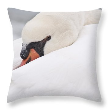 Alert Rest Throw Pillow