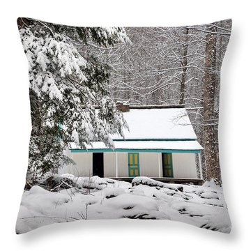 Throw Pillow featuring the photograph Alfred Reagan's Home In Snow by Debbie Green