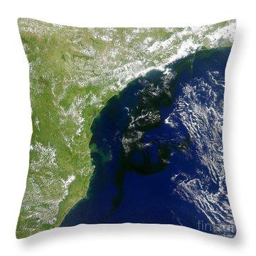 Algal Bloom Off Brazil Coast Throw Pillow