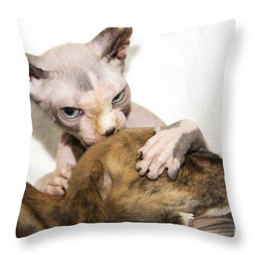 Alien Abduction Throw Pillow by Jeannette Hunt