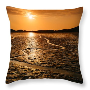 Alien Planet? Throw Pillow