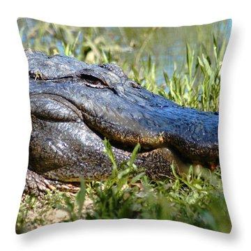 Alligator Smiling Throw Pillow