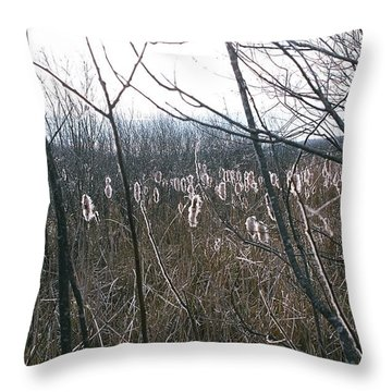 Throw Pillow featuring the photograph All Aglow by David Porteus