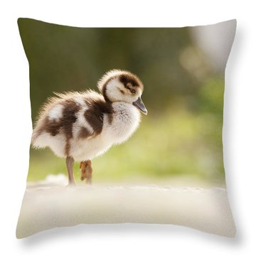 All Alone - Egyptean Gosling And A Tree Throw Pillow