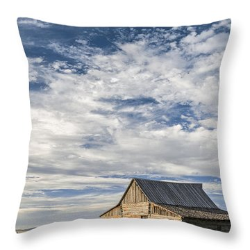 All Alone II Throw Pillow
