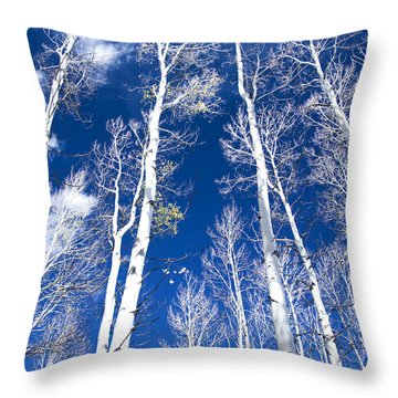 All But Gone Throw Pillow by The Forests Edge Photography - Diane Sandoval