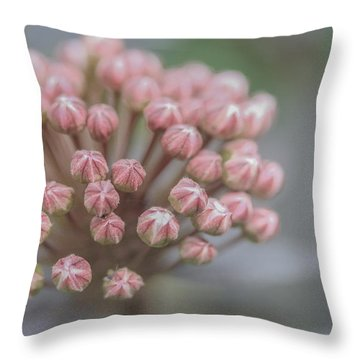 All Dressed In Pink And White Throw Pillow by Jacqui Boonstra