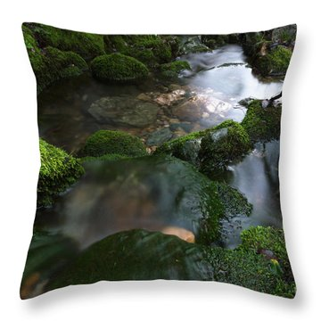 All Good Things In All Good Time Throw Pillow