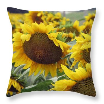 All Heads Bowed Throw Pillow