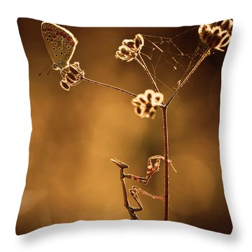 Hunt Throw Pillows